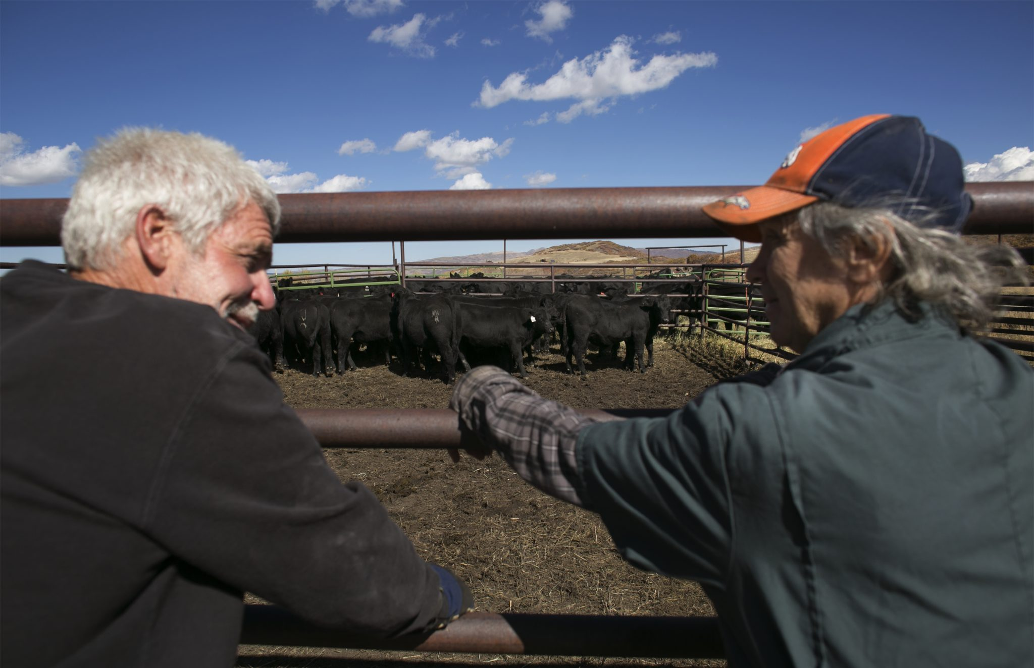 Mike Ripp and Tim Holt consult on Ripp's ranch