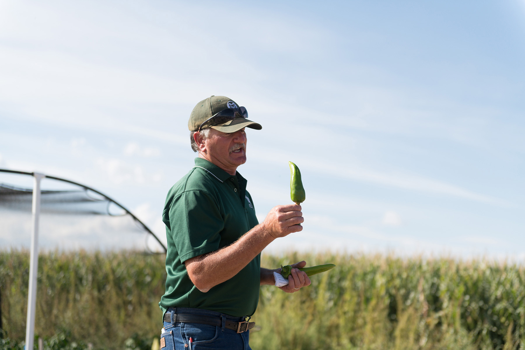 CSU crops researcher Michael Bartolo holds up and discusses chile farming in the Arkansas Valley.